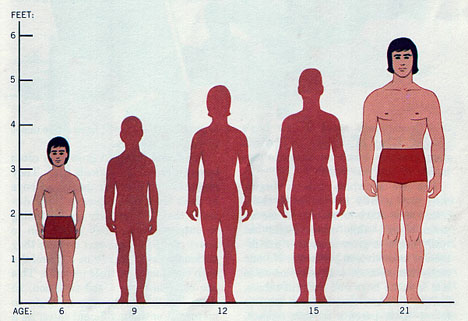 facts about human height