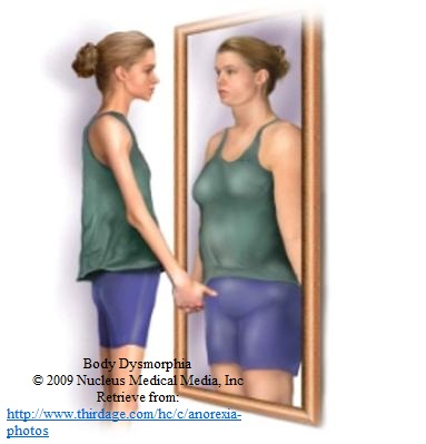 eating disorders personal or social problem What causes eating disorders  stage for a full blown eating disorder in the future social factors  tackles her/his body instead of the problem at hand dieting.