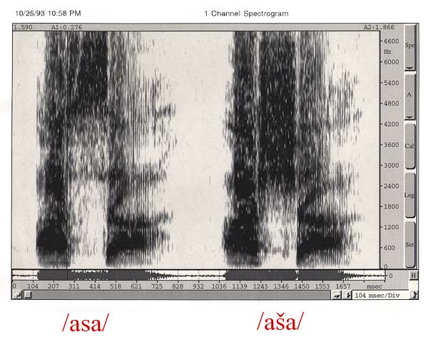 "Spectrogram for ""s"" and ""sh"""