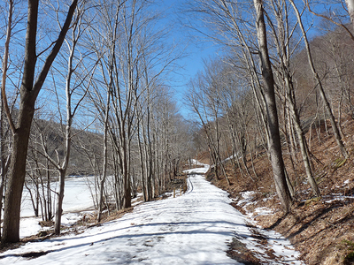 Roaring Run Trail near Edmon, PA in late February 2014