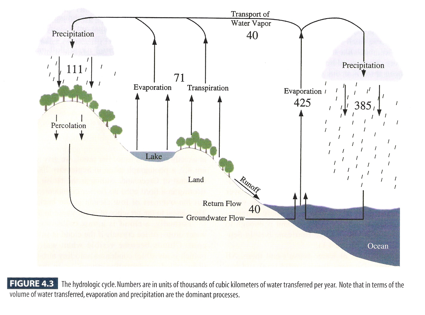 Online images for a world of weather figure 43 the hydrologic cycle ccuart Image collections