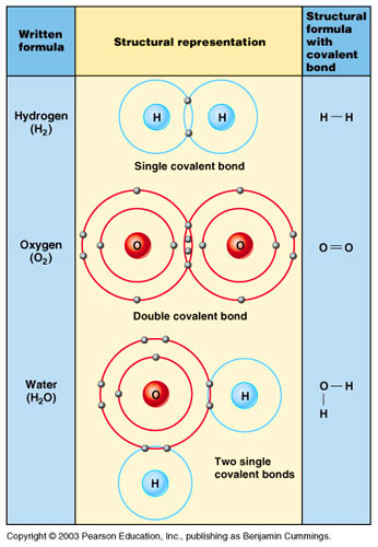 what are some similarities between ionic bonds and covalent bonds