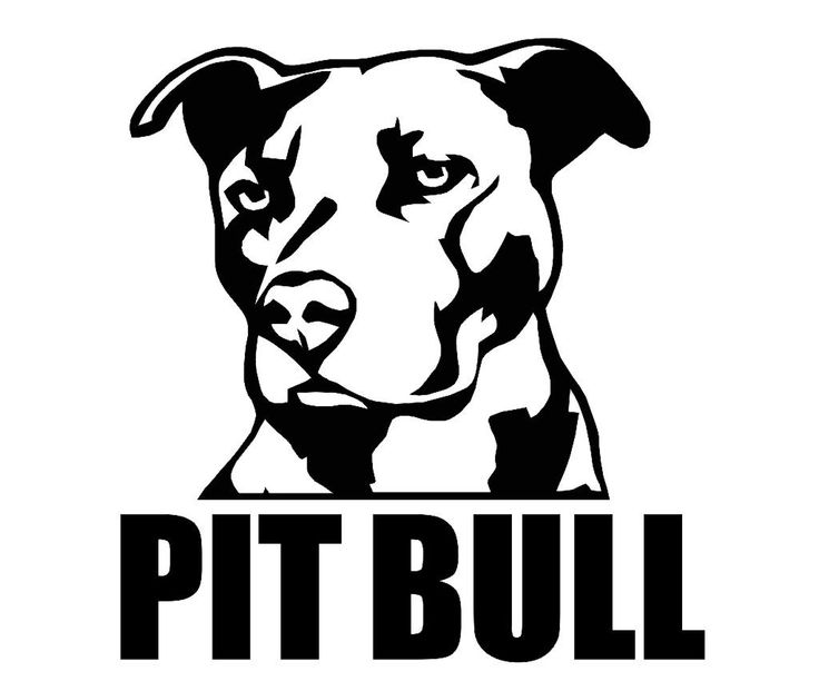 my pit bull emerson wel e Emerson Process Management Logo my favorite toys