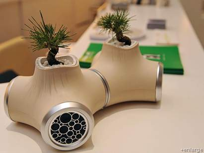 Music Can Help Your Plants Grow Seriously Siowfa12 Science In Our World